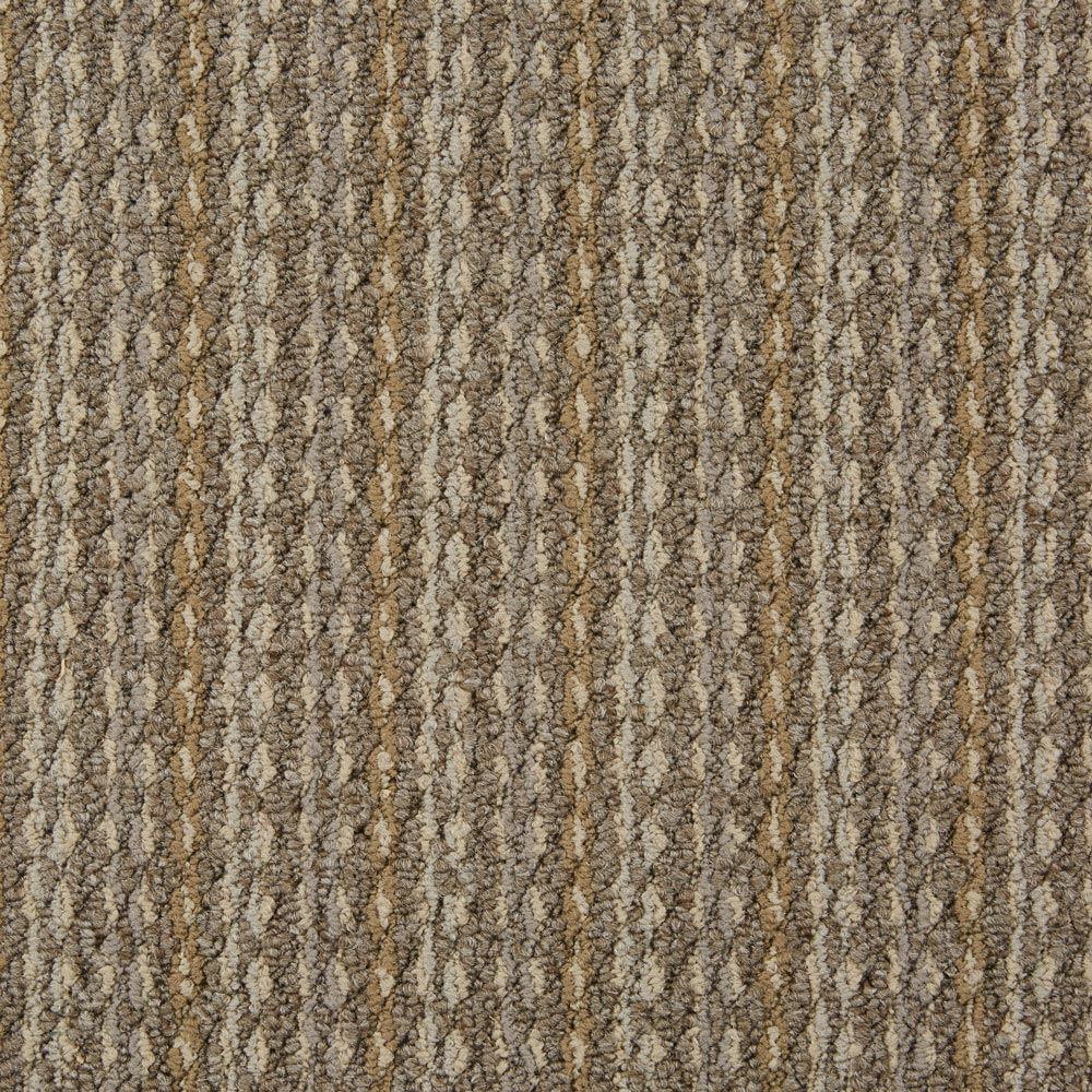 Arise Commercial Carpet Fine Tune Color