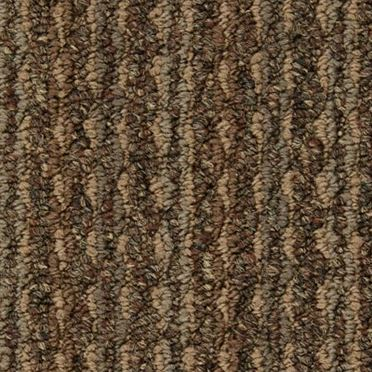 Arise Commercial Carpet And Carpet Tile Sharpen Color