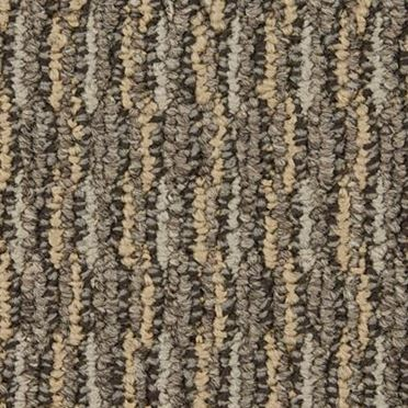 Aspire Commercial Carpet And Carpet Tile Transcend Color