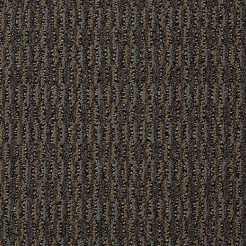 Aspire Commercial Carpet Transform Color