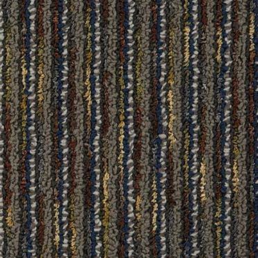 CEO II Commercial Carpet And Carpet Tile Archaeologist Color