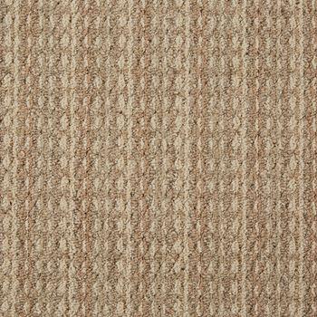 Arise Commercial Carpet Amend Color