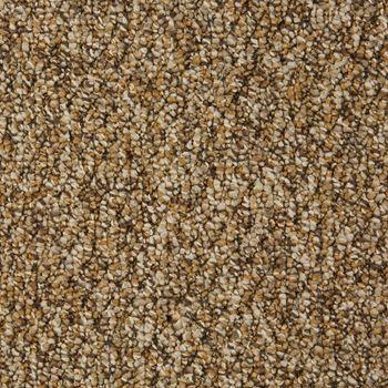 Franchise II Commercial Carpet Woodland Color