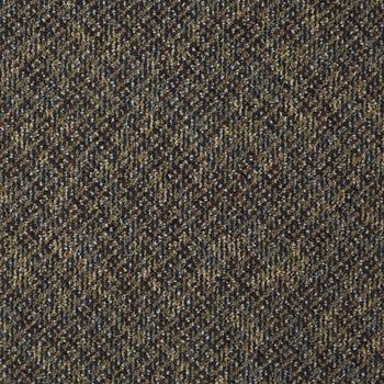 Doctor II Commercial Carpet Archaeologist Color