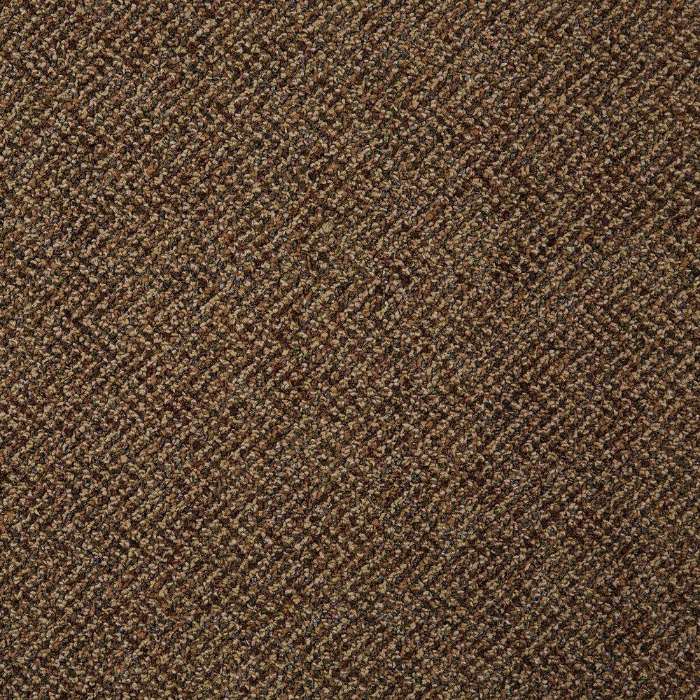Doctor II Commercial Carpet Educator Color