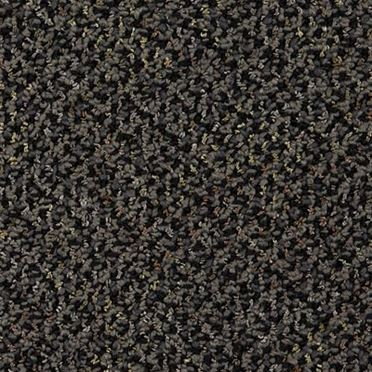 Doctor II Commercial Carpet And Carpet Tile Writer Color