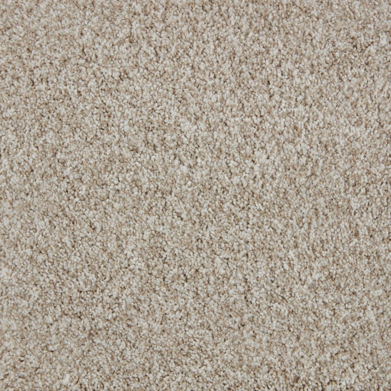 Impress Plush Carpet Enliven Color