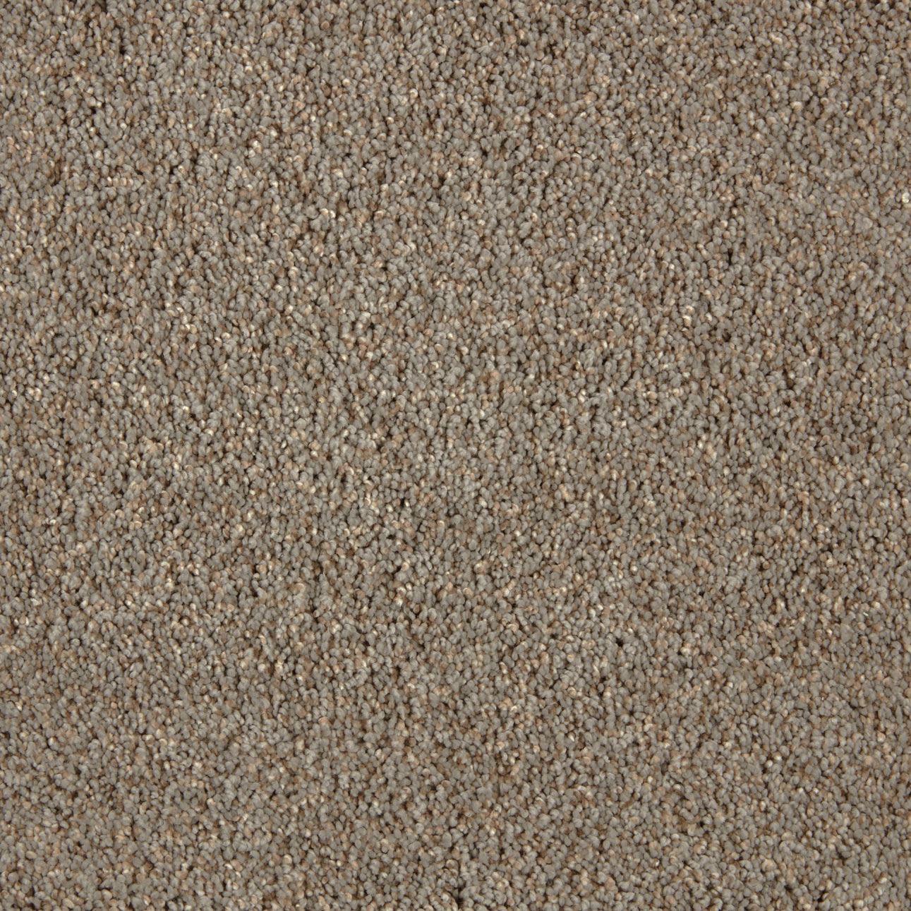 Impress Plush Carpet Bewilder Color