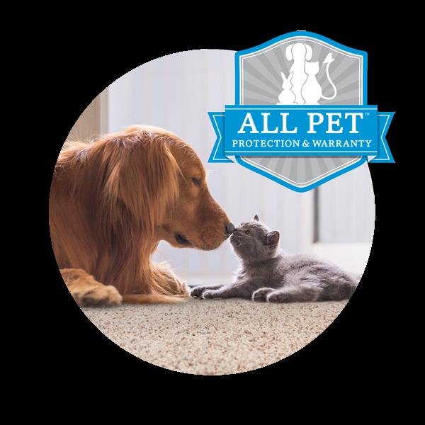 All Pet