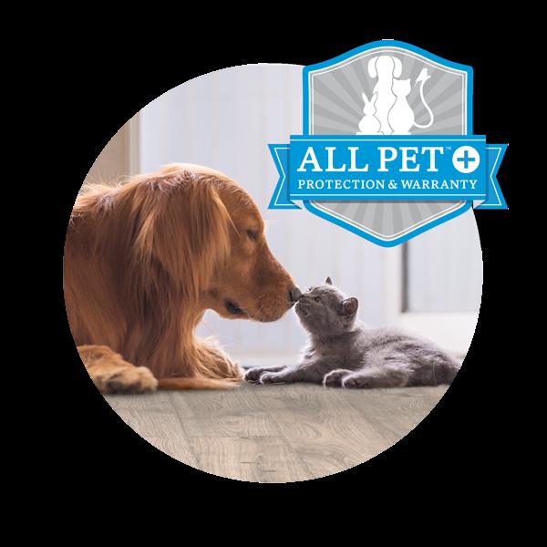 All Pet Plus