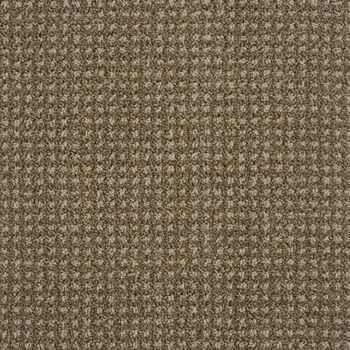 Big Time Pattern Carpet Earthy Color