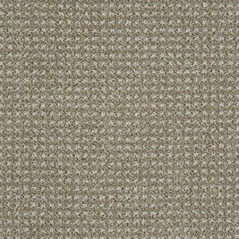Big Time Pattern Carpet Gray Sky Color
