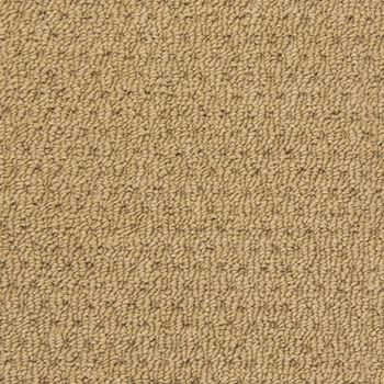 Dream Catcher Berber Carpet Beach Sand Color