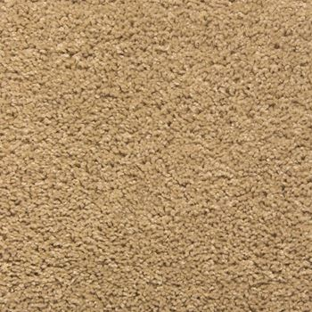 Eden Plush Carpet Bare Color