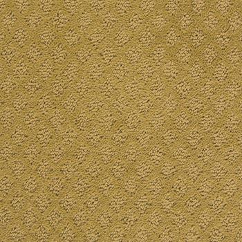 Fallen Star Pattern Carpet Serenity Color