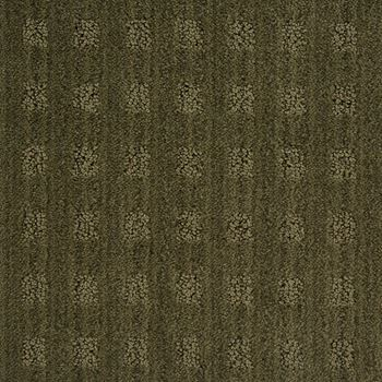 Marquis Pattern Carpet Coctail Olive Color