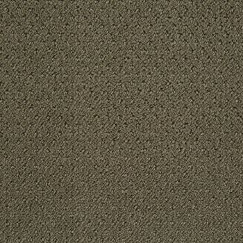 Motivate Pattern Carpet Silver Sage Color