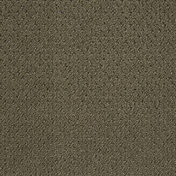 Motivate Pattern Carpet Silver Sage Color