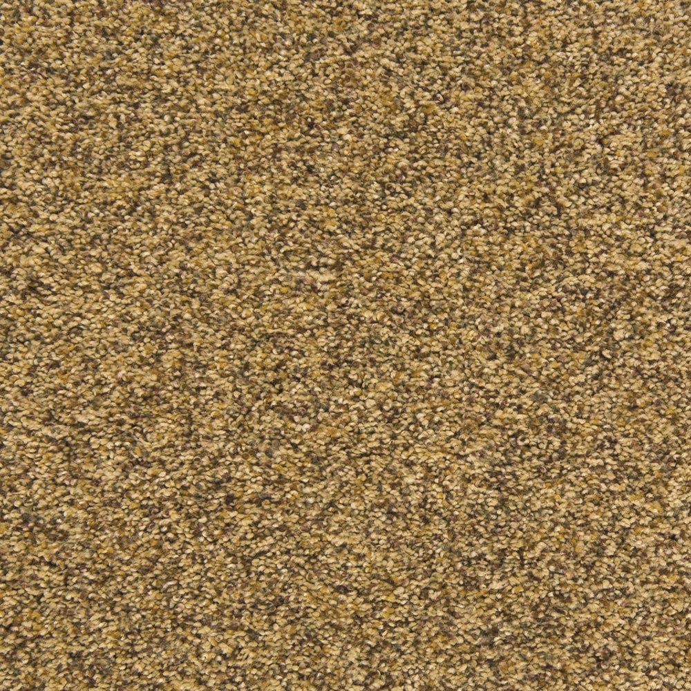 Visual Beauty Plush Carpet