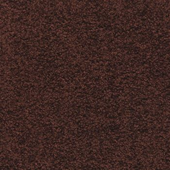 Pendleton Plush Carpet Cinnabar Color