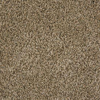 Sunny Isles Frieze Carpet Radiance Color