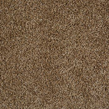 Sunny Isles Frieze Carpet City Sunrise Color