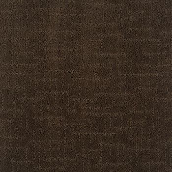 Shindig Pattern Carpet Dark Earth Color