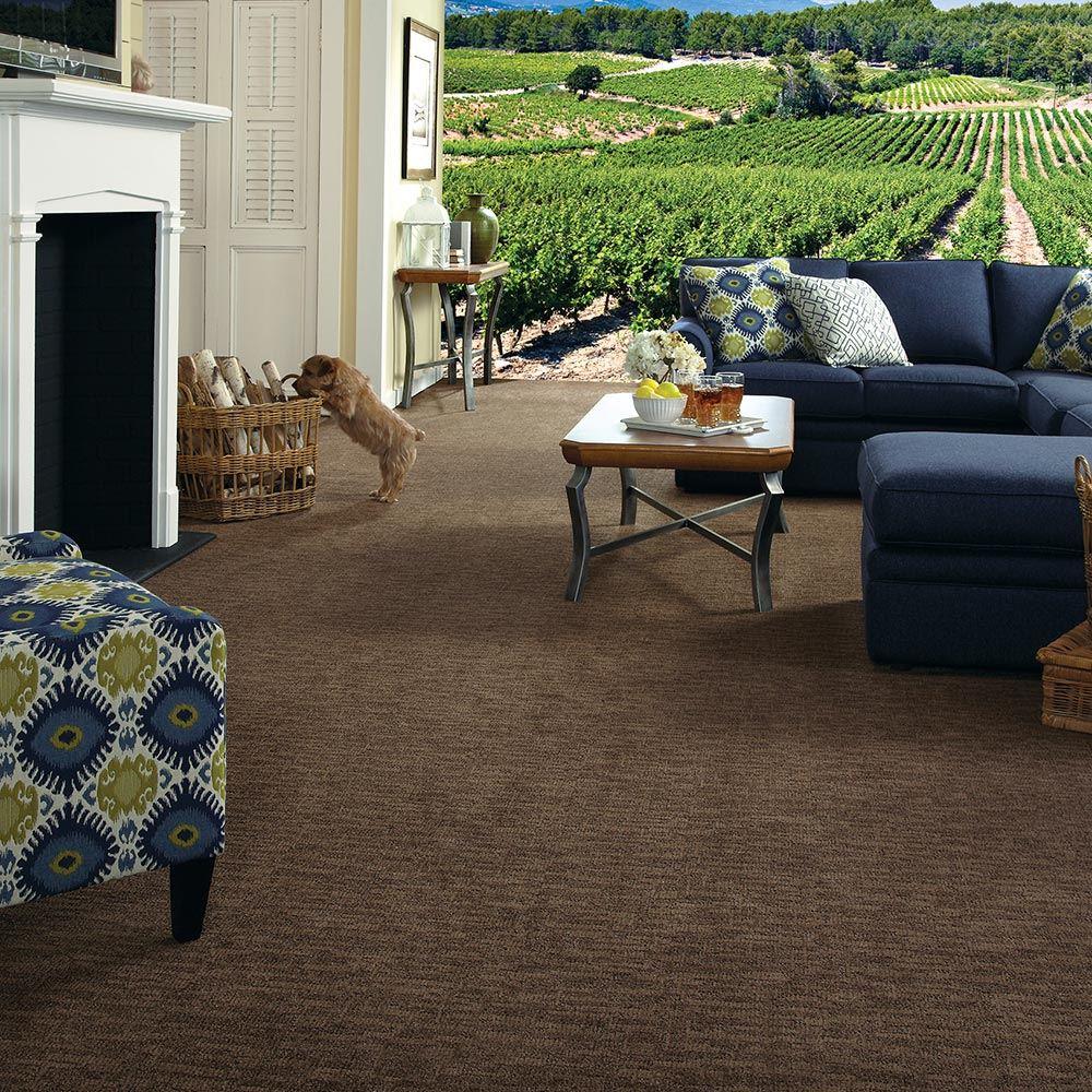Arietta Platinum Carpet