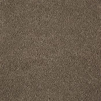 Parlor Plush Carpet Contour Color