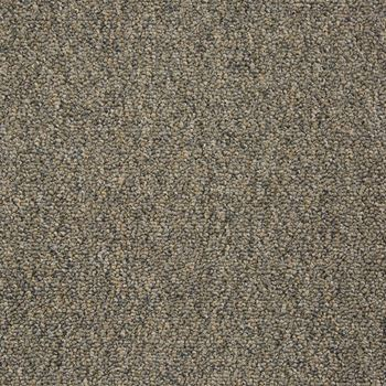 Tenbrooke II Commercial Carpet And Carpet Tile Distant Thunder Color