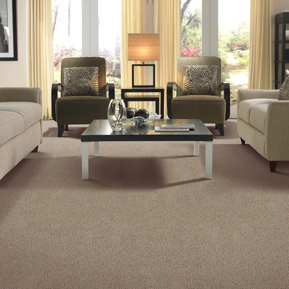 Beldon Plush Carpet