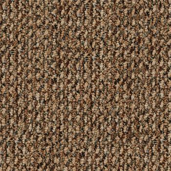 Name Game Berber Carpet Double Dutch Color