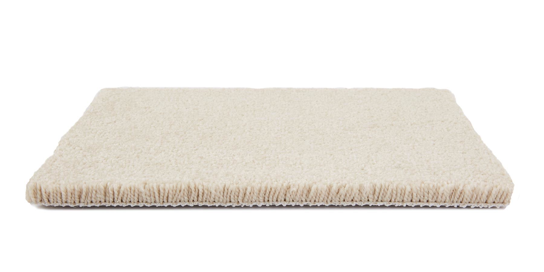 Fair Meadow Plush Carpet