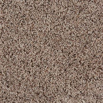 Sidekick Frieze Carpet Birch Desert Color