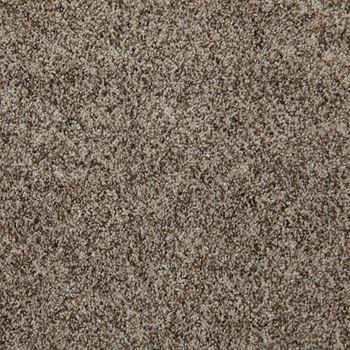 Incomparable Frieze Carpet Great Sandy Color