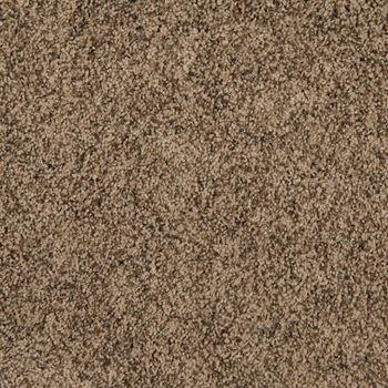 Incomparable Frieze Carpet Joshua Tree Color
