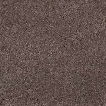 One And Only Plush Carpet Matchless Color