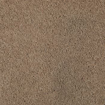 One And Only Plush Carpet Supreme Color