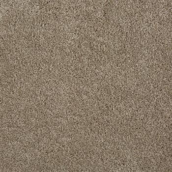 Pleasant Valley Plush Carpet Enchanted Color