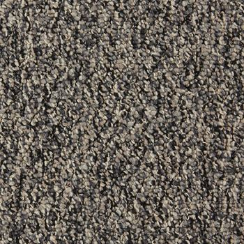 Wavelength Commercial Carpet And Carpet Tile Seismic Color