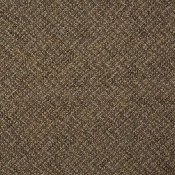 Doctor II Commercial Carpet And Carpet Tile Composer Color
