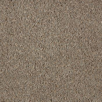 Impress Plush Carpet Bewilder Color