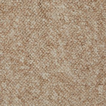 Walk This Way Berber Carpet Conch Color
