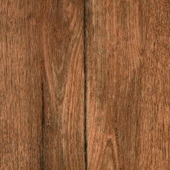 Peninsula Sheet Vinyl Flooring Forestry Color