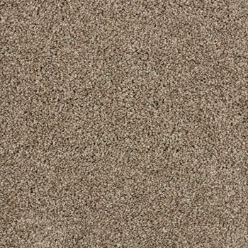Pomona Plush Carpet Coronado Color