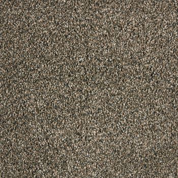 Pomona Plush Carpet Balboa Color