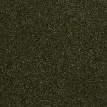Elements Plush Carpet Glade Green Color