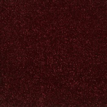 Elements Plush Carpet Radiant Color