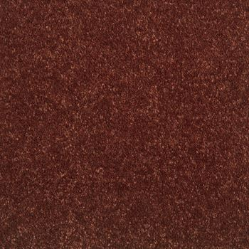 Elements Plush Carpet Azalea Color