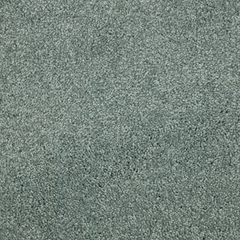 Fundamental Plush Carpet Gentle Gray Color